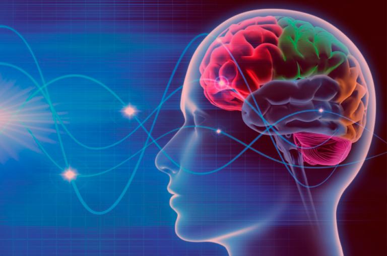 Como elaborar um plano de aula tendo como base conceitual a Neuroplasticidade