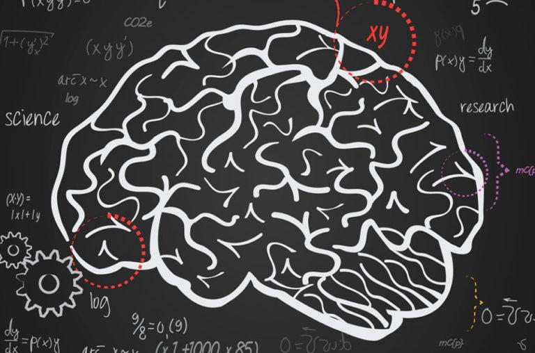 Como o cérebro aprende matemática